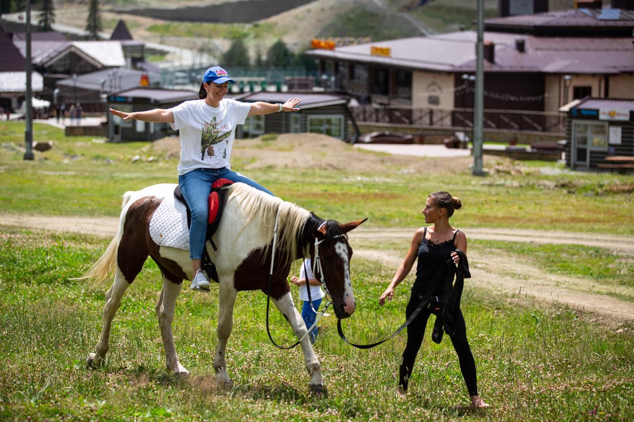 конная школа